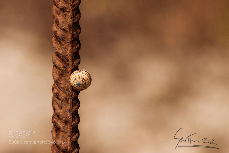 Photograph Free climbing by Francesco Gratteri on 500px