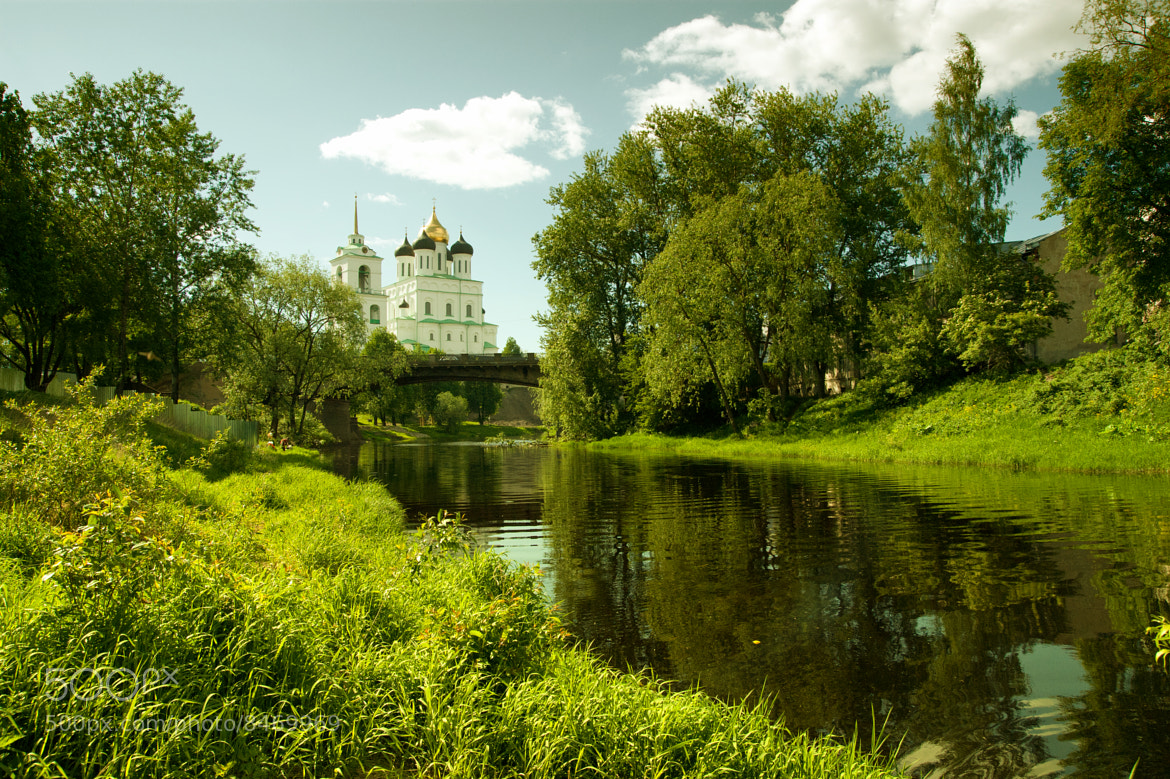 Photograph Green summer by Sergey Suhanov on 500px