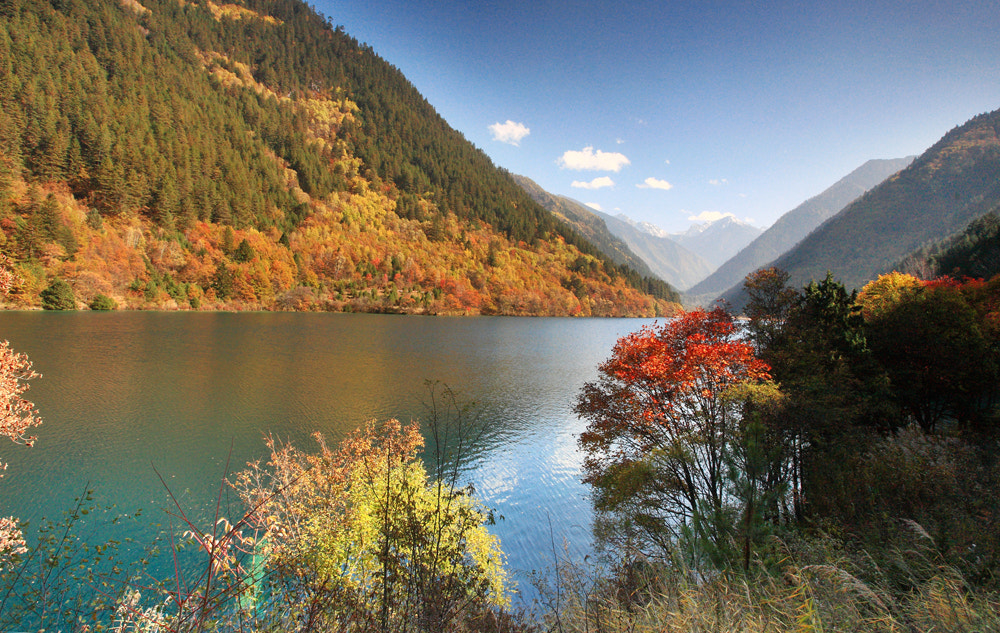 Photograph Colors of autumn by Viet Hung on 500px