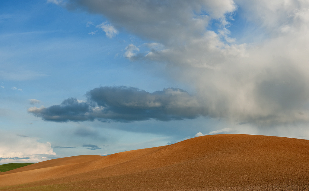 Photograph Golden hills in the Palouse by John Barclay on 500px