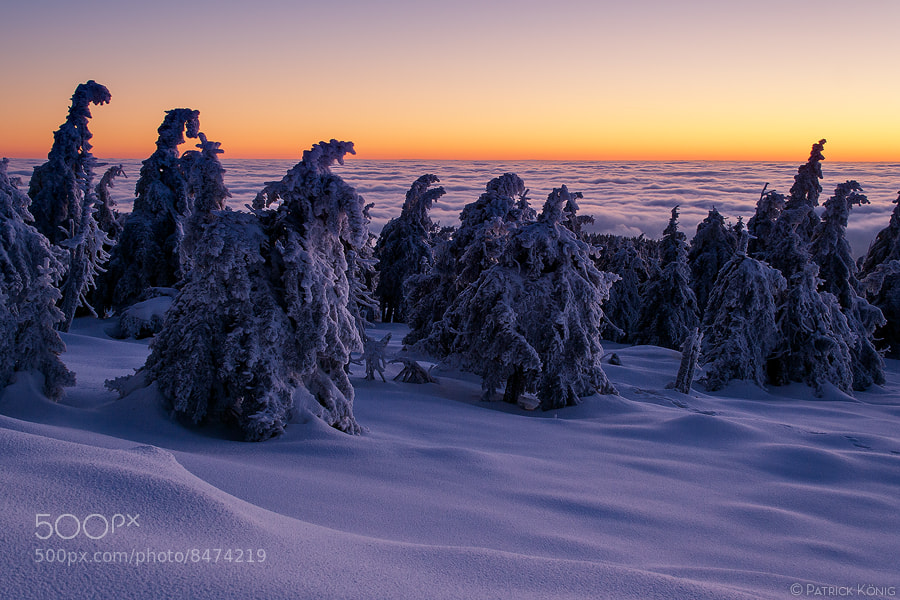 Photograph winter dawn by Patrick König on 500px