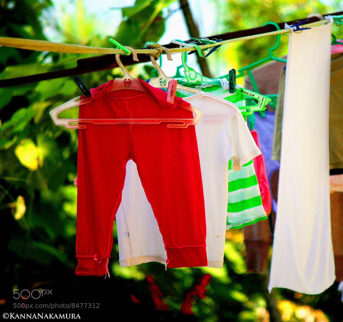 Photograph My Red Shorts and Colored Shirts by Kanna Nakamura on 500px