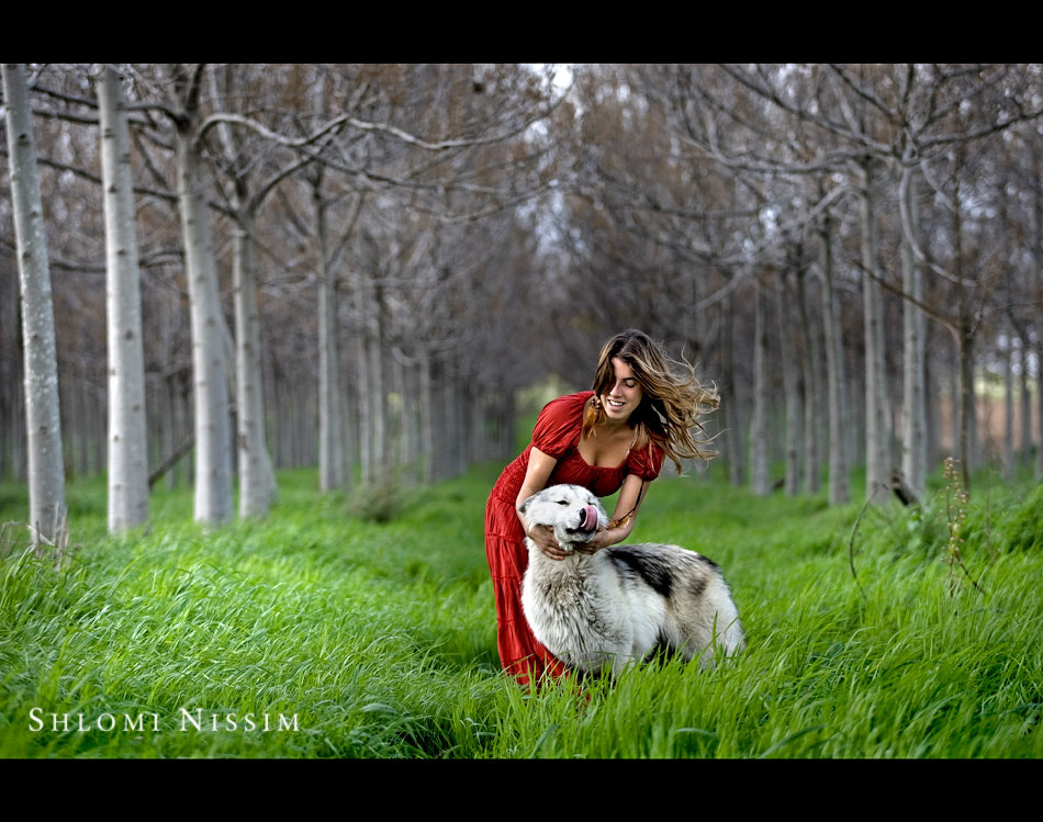 Photograph LITTLE RED RIDING HOOD -THE TRUE STORY by shlomi nissim on 500px