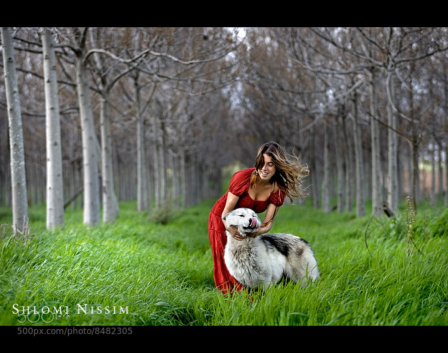 LITTLE RED RIDING HOOD -THE TRUE STORY by shlomi nissim (Shlominissim)) on 500px.com