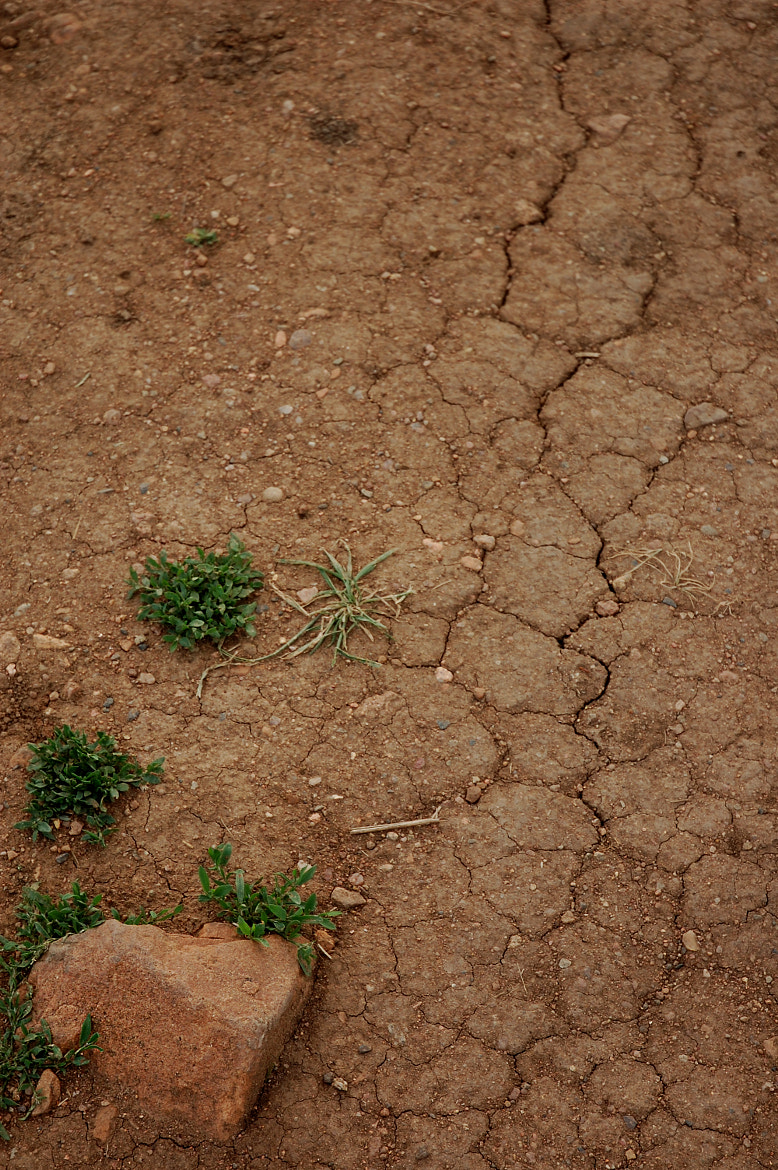 Photograph Cracks in the Earth by Cierra Williams on 500px