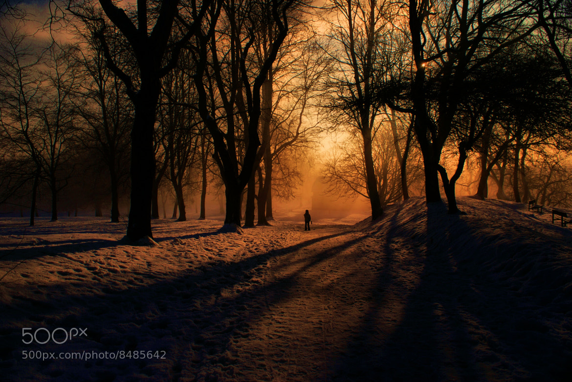 Photograph The Stranger & The Shadows At The Gates of Dawn by Pablo Khaled on 500px