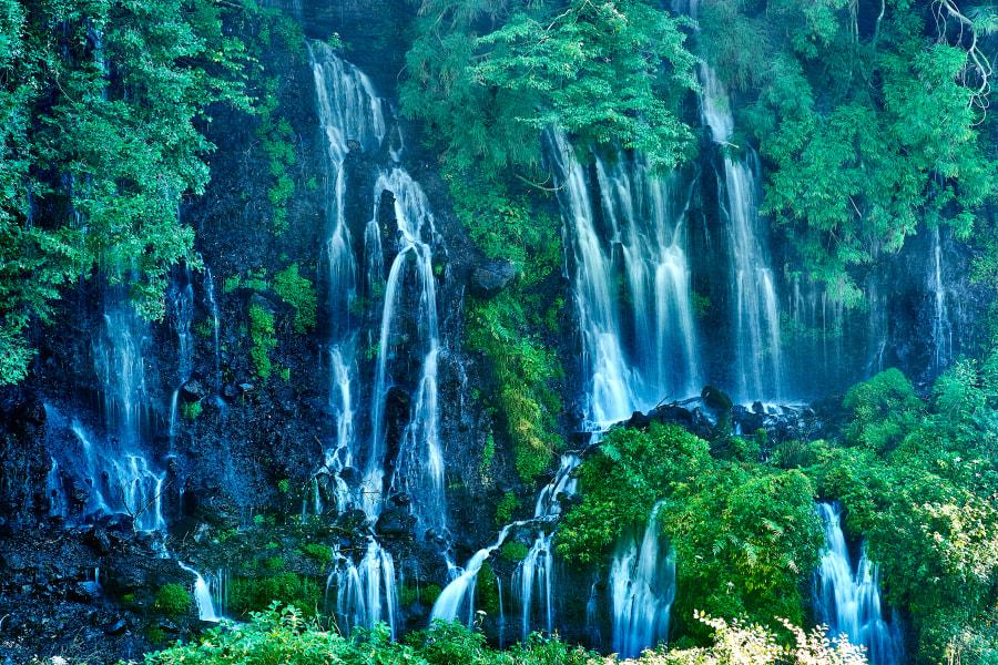 Waterfall of life