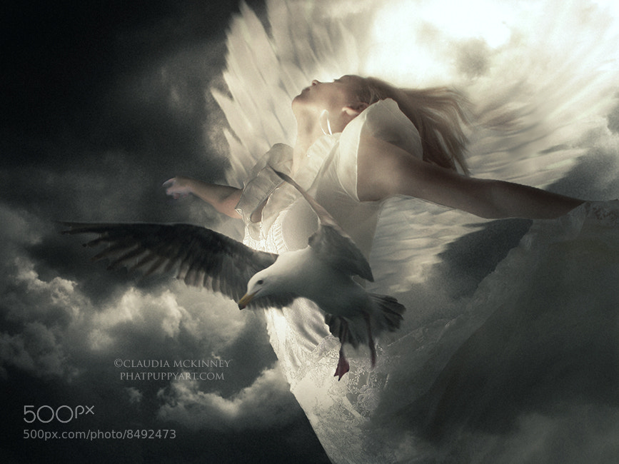 Photograph Learning to Fly by Phatpuppy Art on 500px