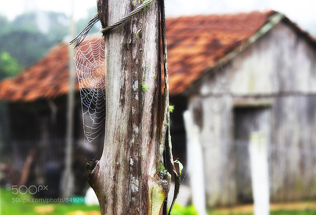 Photograph Empty House by Alberto Nogueira Junior on 500px