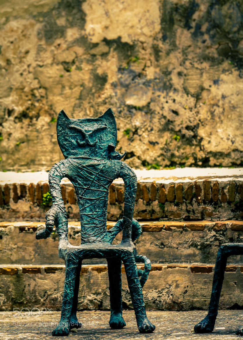Photograph Gato Seat by Manuel Liaño on 500px