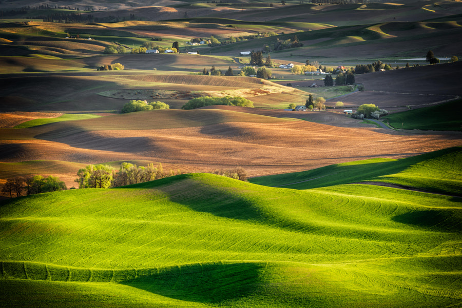 Photograph Palouse Hills by Mei Xiaoguang on 500px