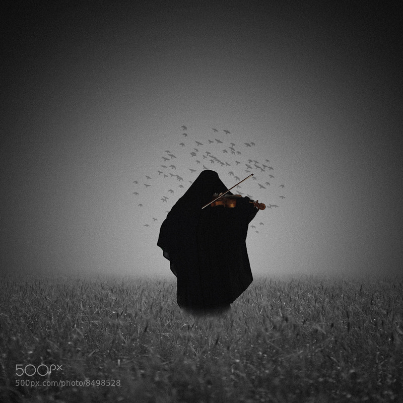 Photograph Dark musician by Hossein Zare on 500px