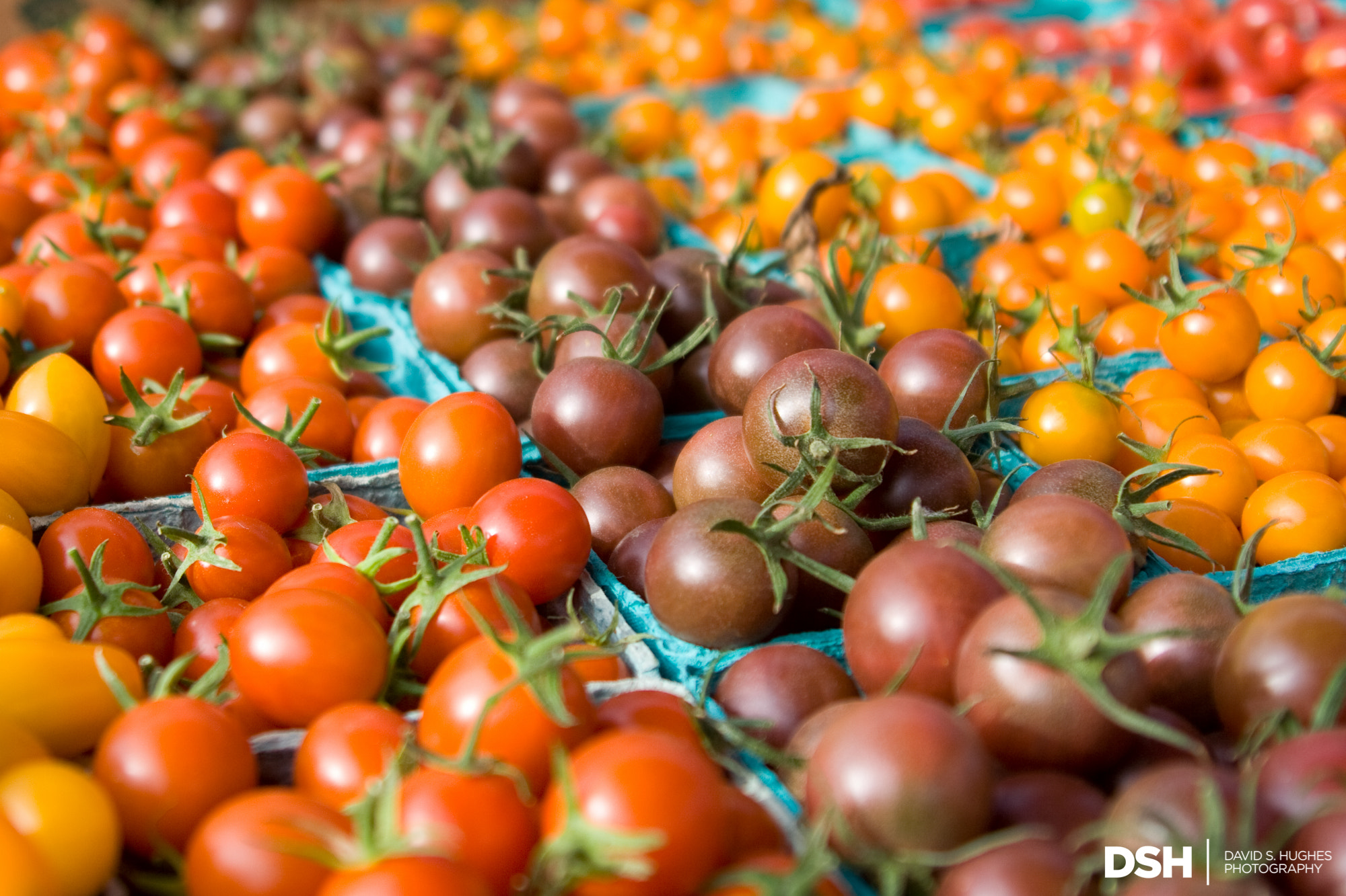 Photograph Market Tomatoes by David Hughes on 500px