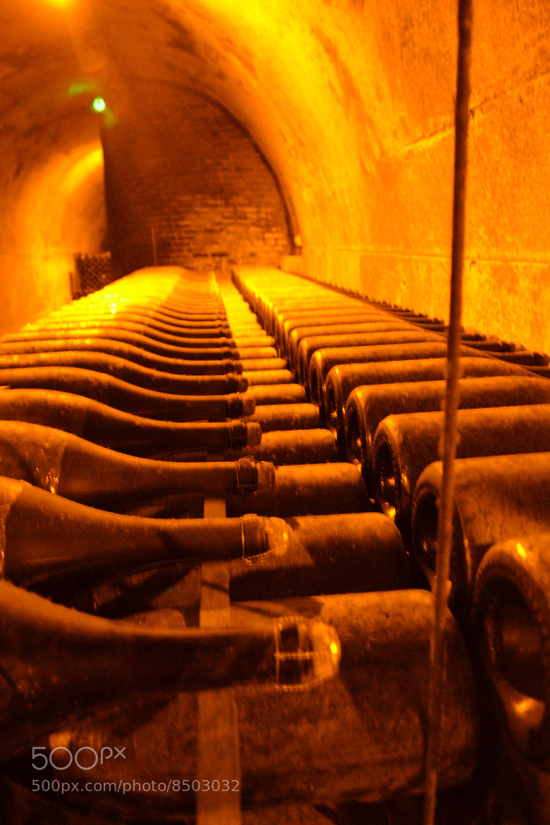 Photograph Comtes de Champagne, Taittinger by dickon . on 500px
