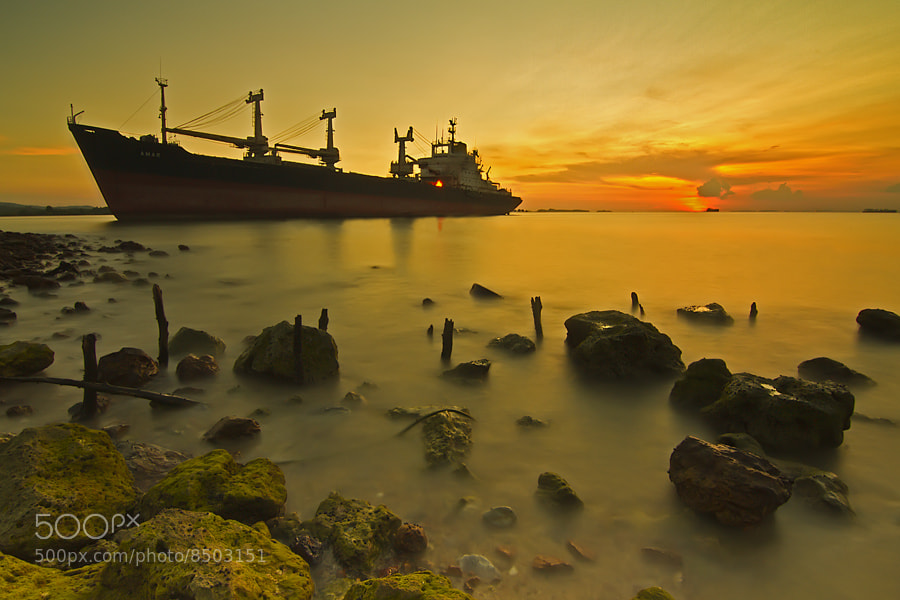 Photograph Golden Time by tommy_hoki on 500px