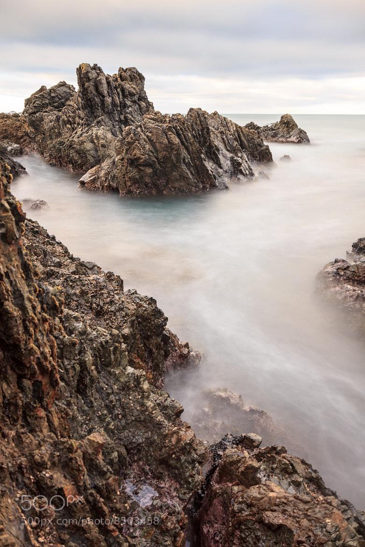Photograph Wellington South Coast by Grant Newton on 500px