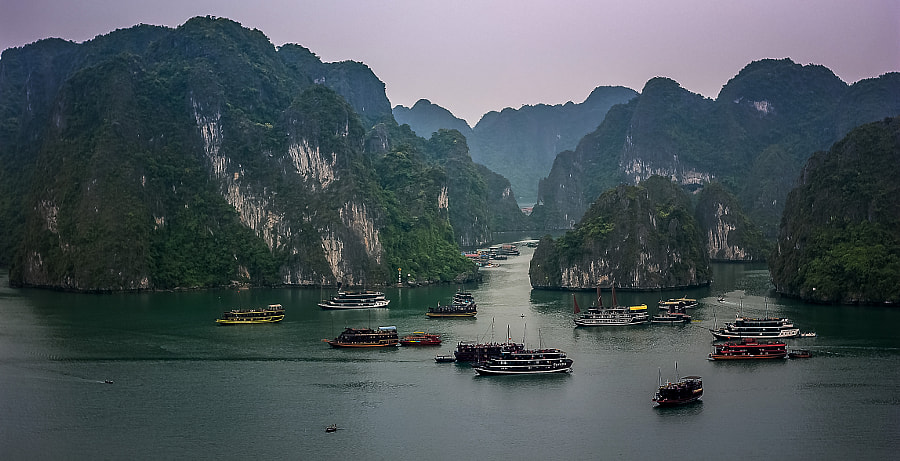 Busy waters.. Ha Long Bay