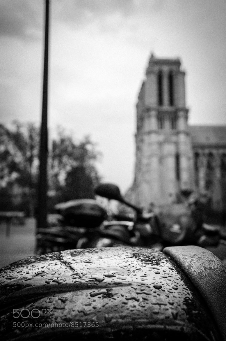 Photograph Notre Dame doesn't want to see the rain by Romain Lebrun on 500px