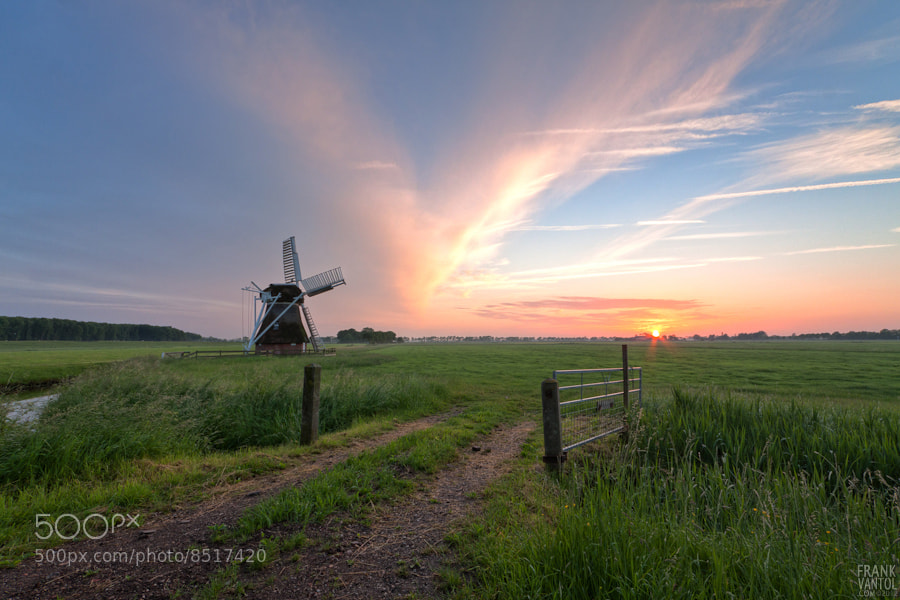 Photograph 't Witte Lam at Sunset (2) by Frank vanTol on 500px
