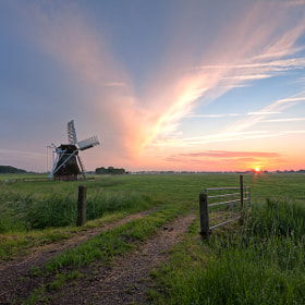 't Witte Lam at Sunset (2) by Frank vanTol (Frenklin)) on 500px.com
