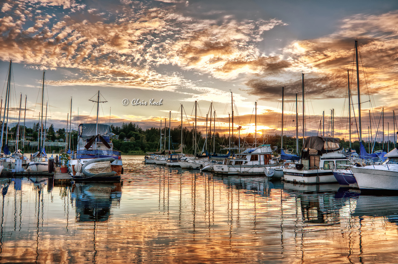 Photograph Sunset on Percival Landing by Chris Koch on 500px