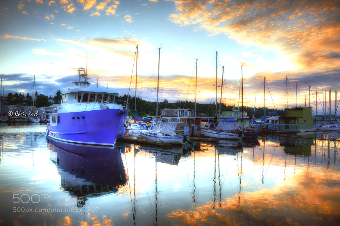 Photograph Olympia's West Bay at Sunset by Chris Koch on 500px