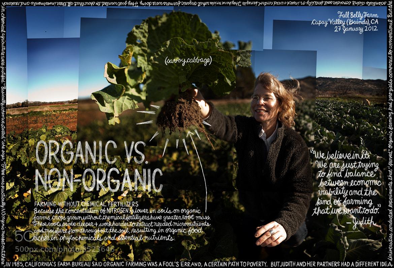 "Photograph #159 ""Organic vs. Non-Organic"" by Douglas Gayeton on 500px"