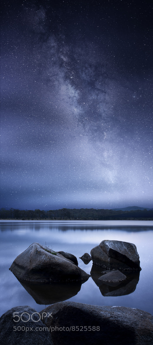 Photograph Blue Straggler by Timothy Poulton on 500px
