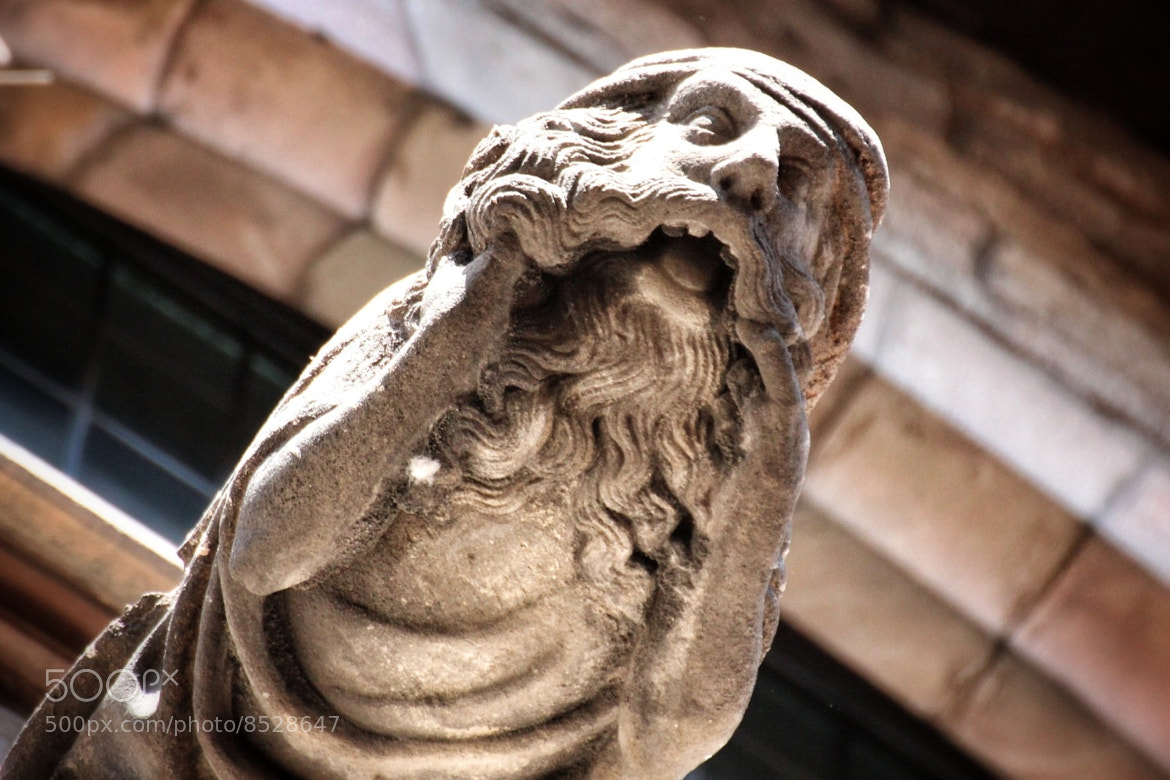 "Photograph The medieval ""scream"" by Marco Cotumaccio on 500px"