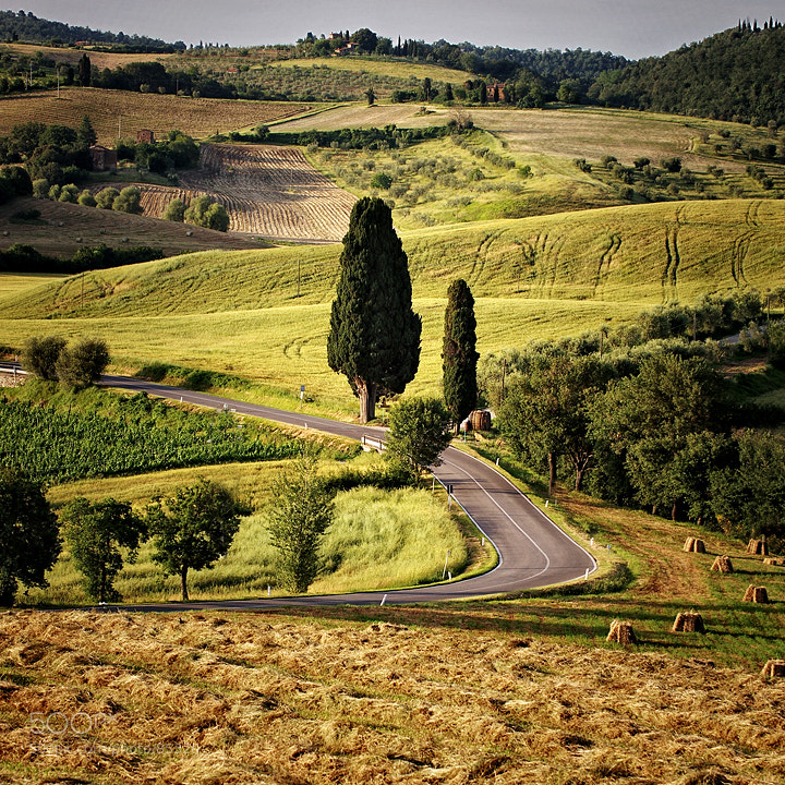 Photograph A Tuscany delight by Edgar Barany on 500px