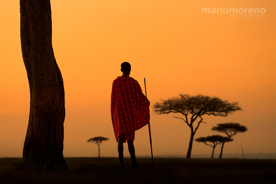 Photograph Maasai Land by Mario Moreno on 500px