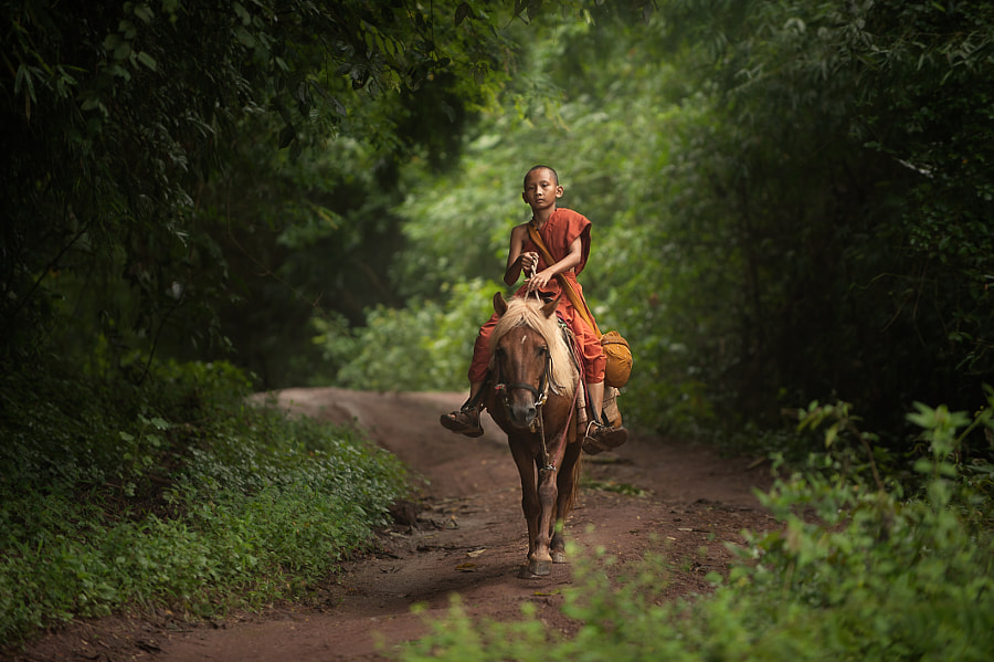 The Young Riding Monk by Vichaya Pop on 500px.com