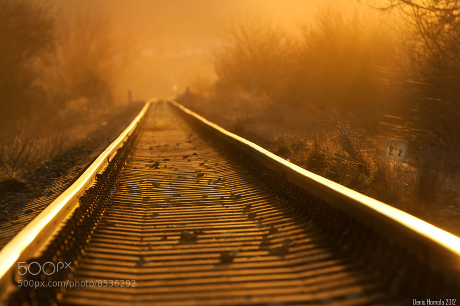 Photograph On rails by Denis  Homola on 500px