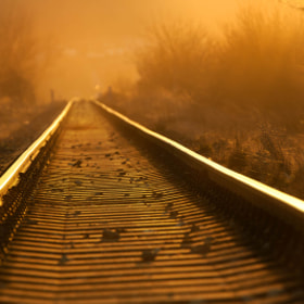 On rails by Denis  Homola (1234deno1234)) on 500px.com