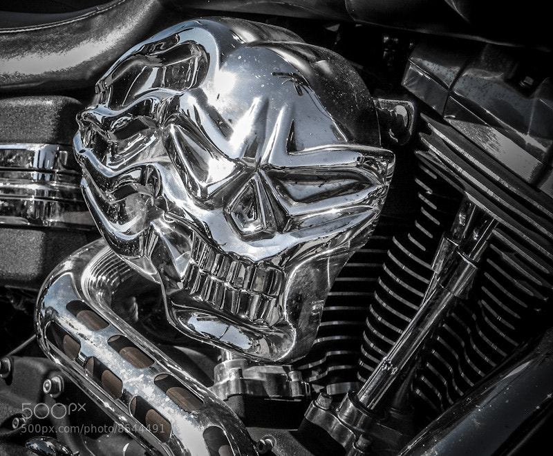 Chrome Scull
