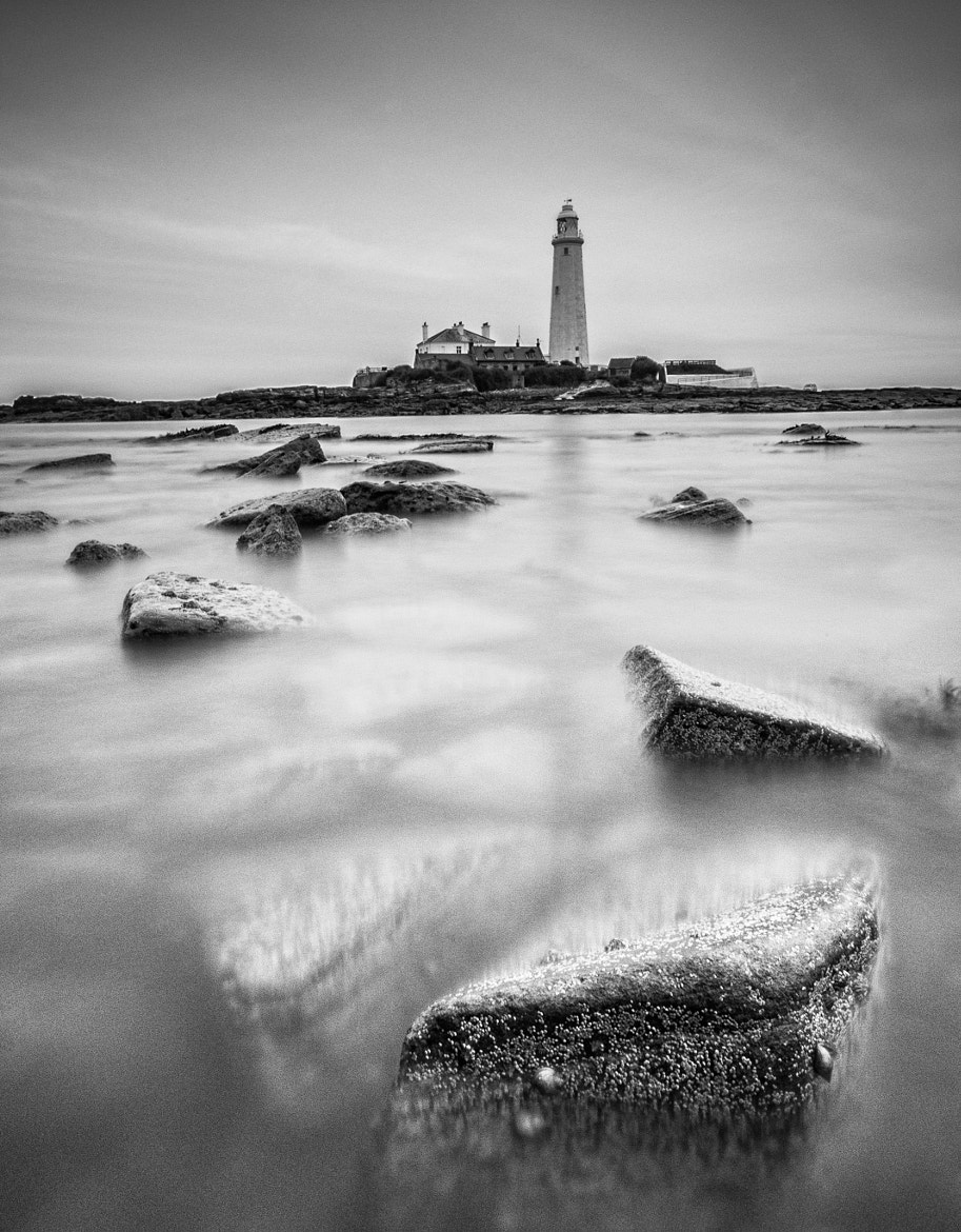 Photograph St Mary's Lighthouse by WilsonAxpe /  Scott Wilson on 500px