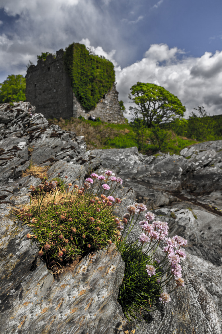 Photograph Lachlan Castle by David Brown on 500px