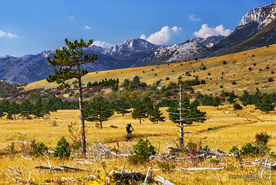 On the way through the Velebit mountain paradise