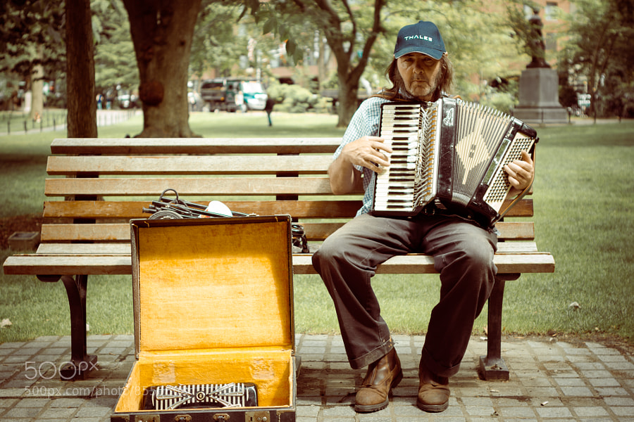 An accordion player, who was quite good, at the Public Gardens in Boston, Mass.