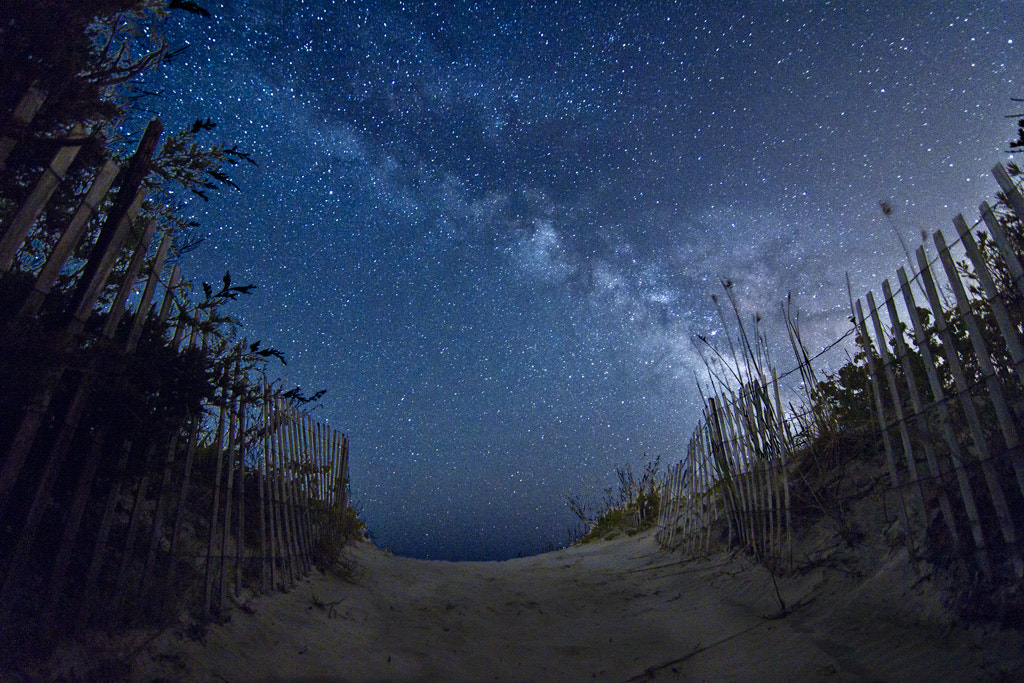 Photograph Watching Over Us by Jack Fusco on 500px