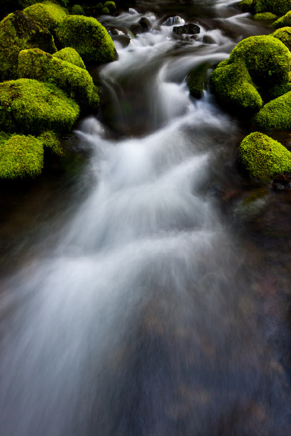 Photograph Ruckel Flow by Ned Fenimore on 500px
