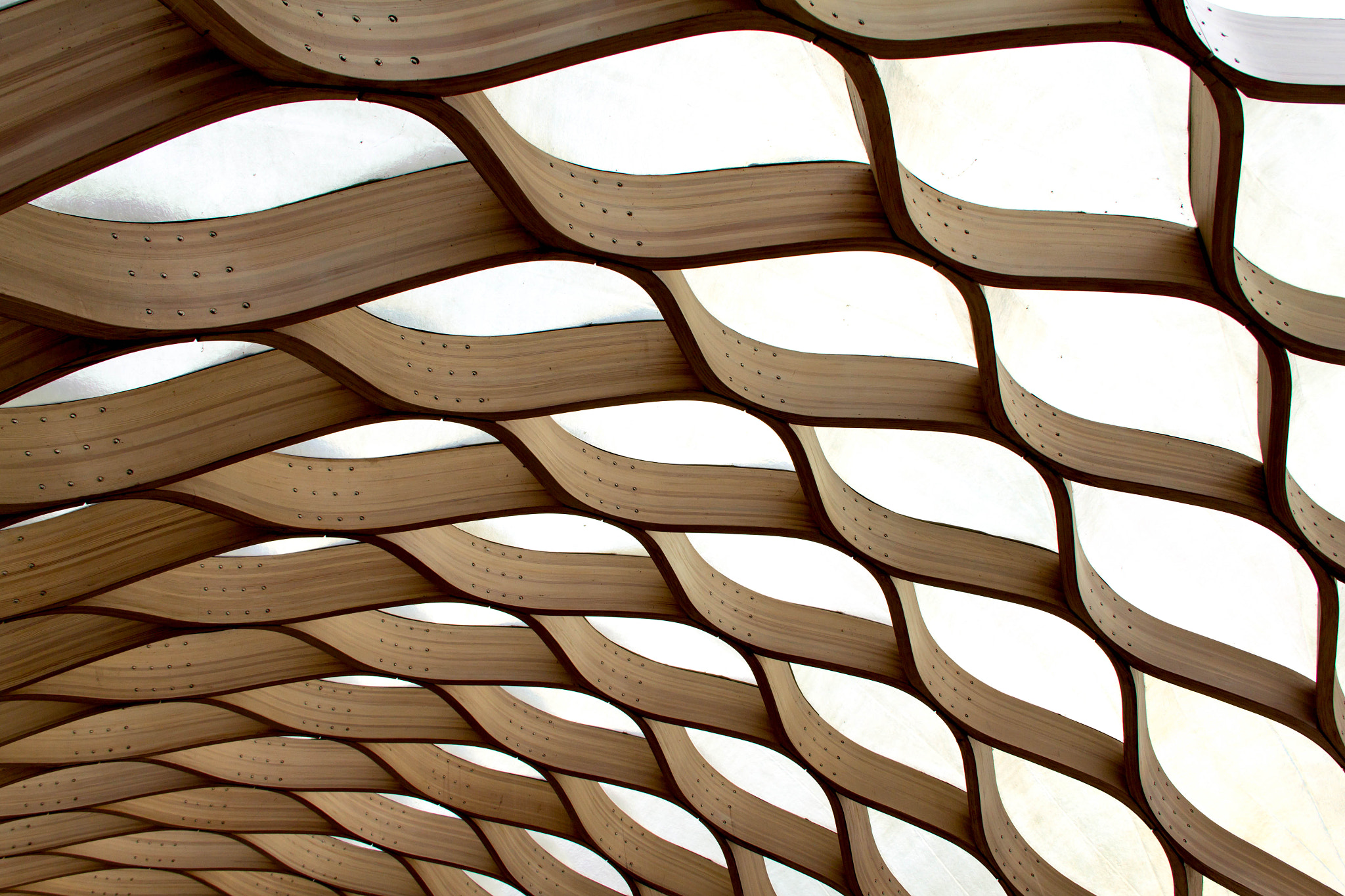 Photograph Waves of Wood by Patrick Dineen on 500px
