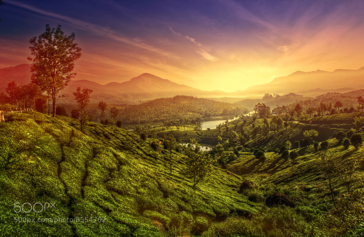Photograph munnar.. by Rakesh B.S on 500px