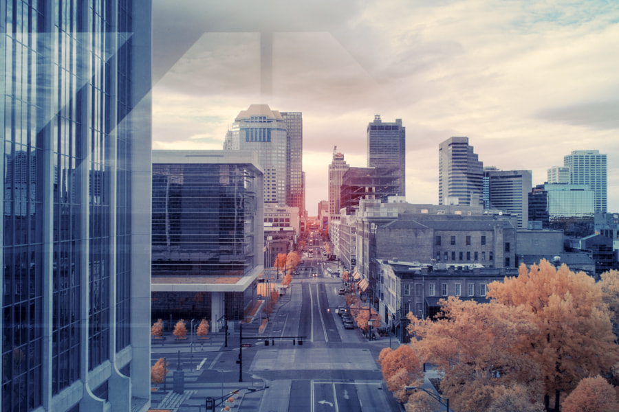 The Heart of the City (color infrared)
