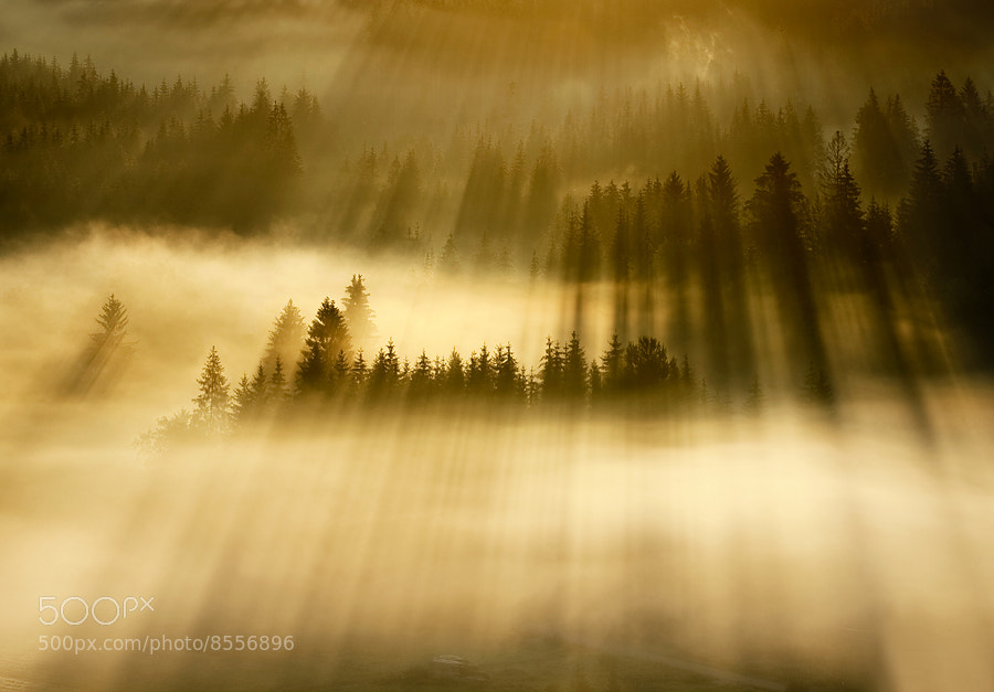 Photograph Warm sunrise by Marcin Sobas on 500px