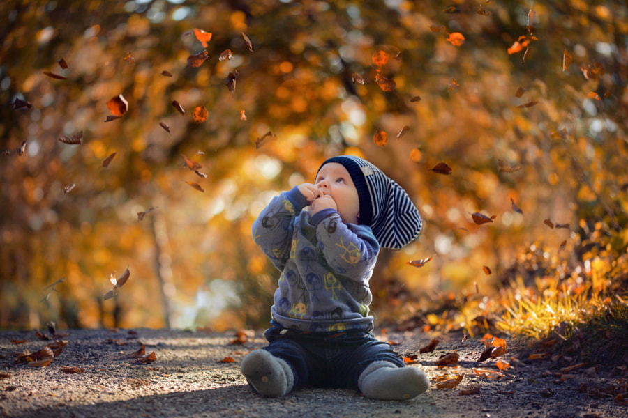 Photograph Falling leaves by Pernille  Nygård on 500px