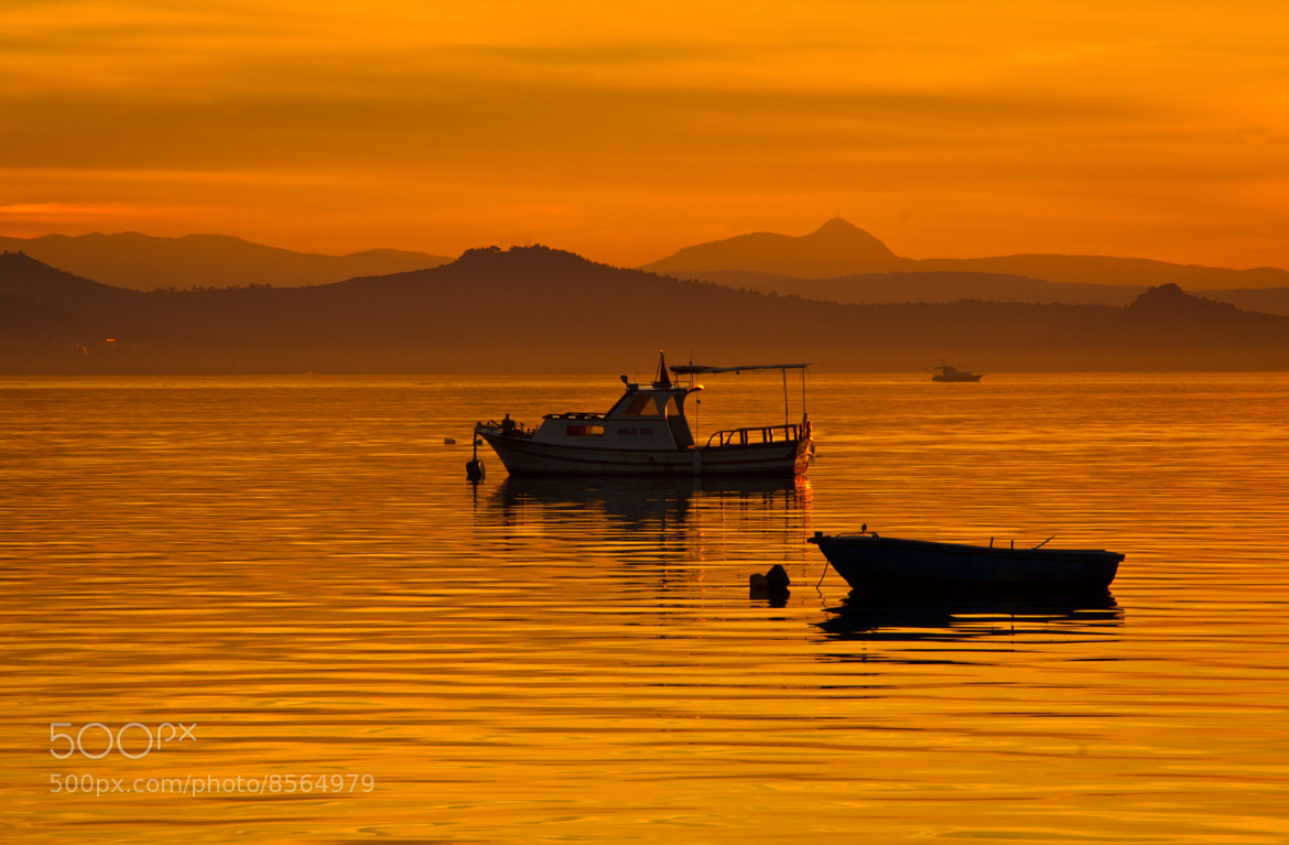 Photograph On the Golden Sea.. by Cihangir   Yariz on 500px