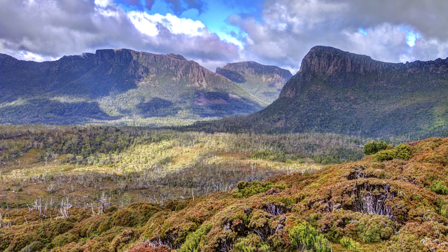 Photograph Tasmanian wilderness by Chris Rolfe on 500px