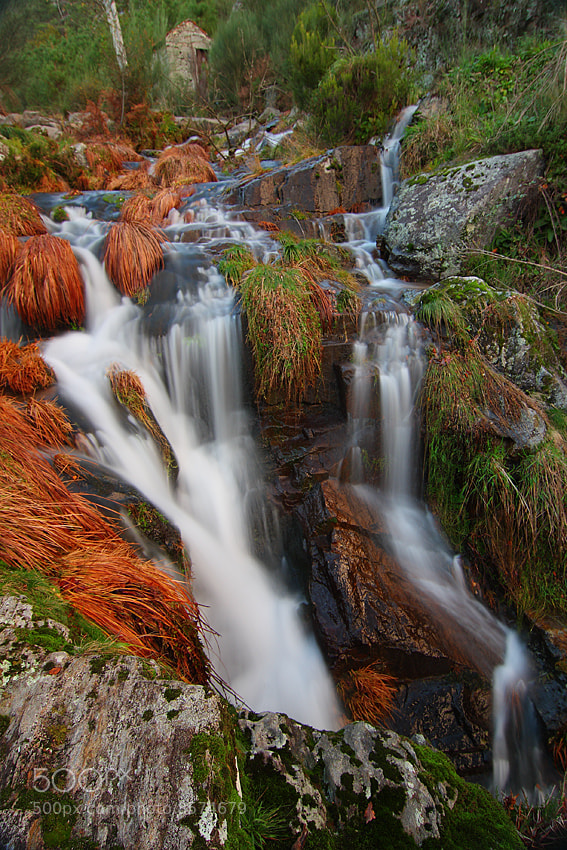 Photograph Water in the fall by Paulo Rocha on 500px