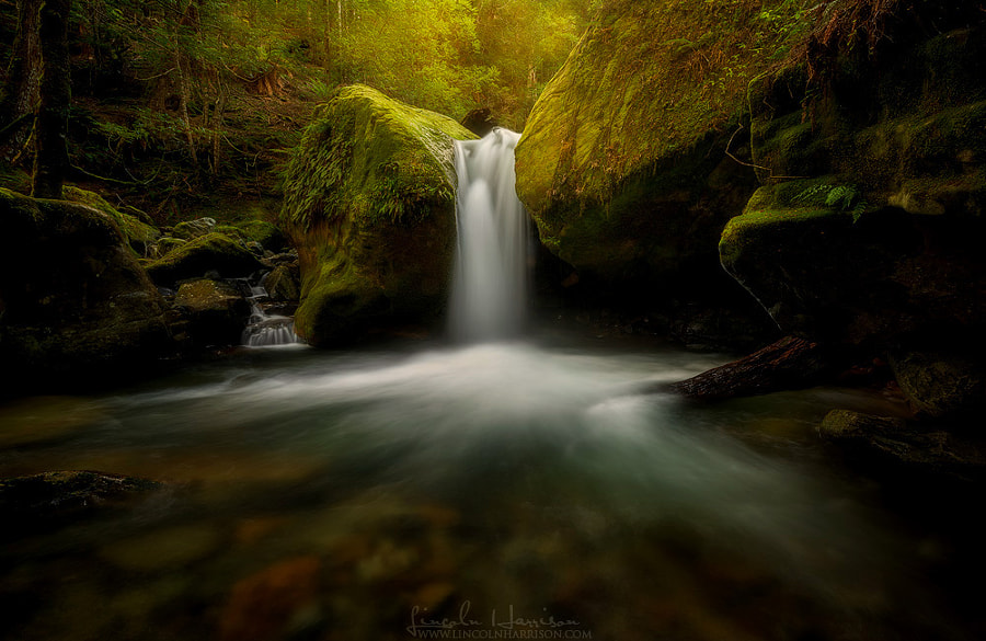 Photograph *** by Lincoln Harrison on 500px
